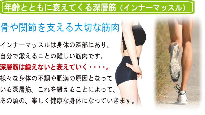 松山市あさひ整体院では、年齢とともに衰えていく深層筋インナーマッスルを鍛えることができます。骨や関節を支える大切な筋肉インナーマッスル。このインナーマッスルは、身体の深部にあり、自分で鍛えることは難しい筋肉です。深層筋は、鍛えないと衰えていく・・・。様々な身体の不調や肥満の原因となっている深層筋。これを鍛えることで、美しく健康的な身体を手に入れることができます。