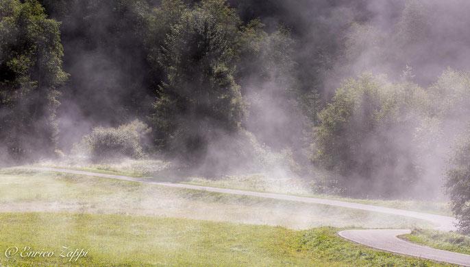Val di Fassa: no, non è fumo.......,non sta andando a fuoco il prato né tanto meno il bosco, ma si tratta di brina che col calore del sole sublima in vapore!
