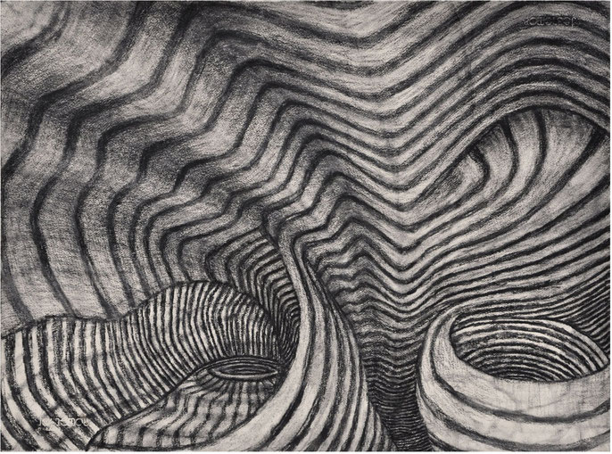 Show Me the Place #5, 2015: charcoal & pastel on paper, 56x76cm