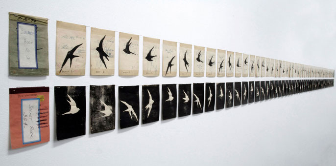 detail: Swallows, 1997: lino cut prints on found invoice-book pages; 104 pieces, each 10.5x14cm; installed 31x600 cm
