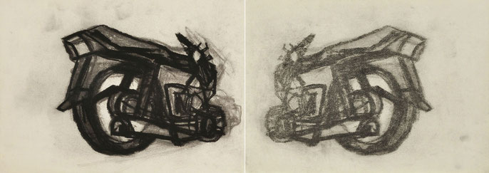 KRP I-2, 2010: charcoal & pastel on paper; 30x82cm (series of 25)