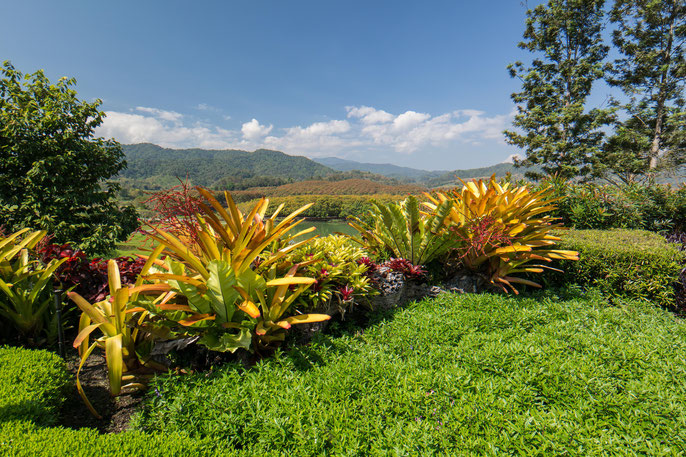 Aussicht vom Singha Park in Chiang Rai