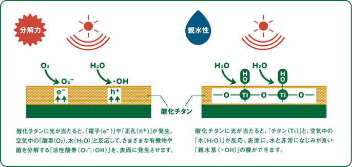 ハイドロテクトの光触媒作用