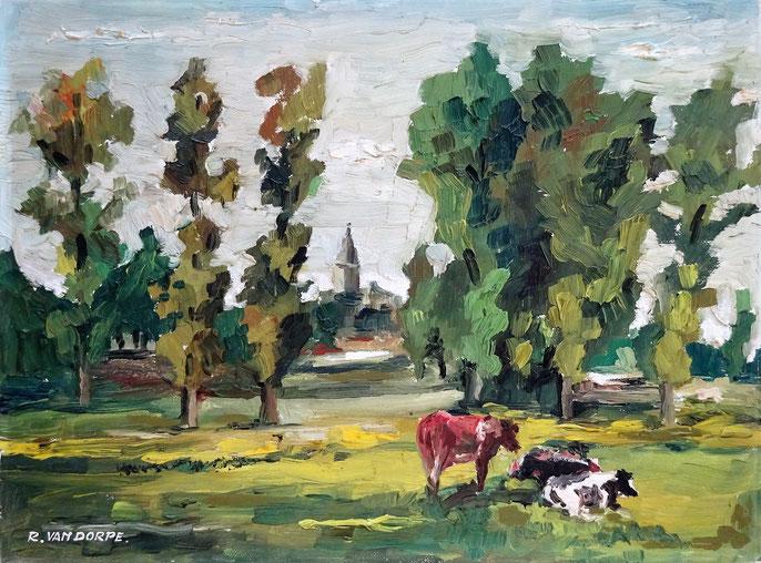 R. Vandorpe, kunstschilder. Schilderij vlaams landschap met koeien te koop.