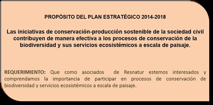 Recuadro 2. Propósito del plan estratégico.