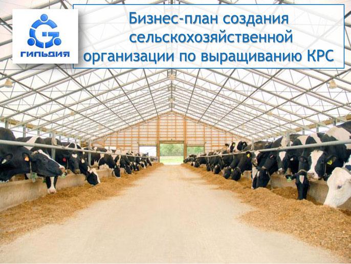 Бизнеспланы Сельское хозяйство