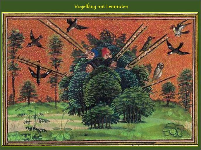 Mittelalterliche Darstellung des Vogelfanges mit einem Lockvogel und Leimruten.