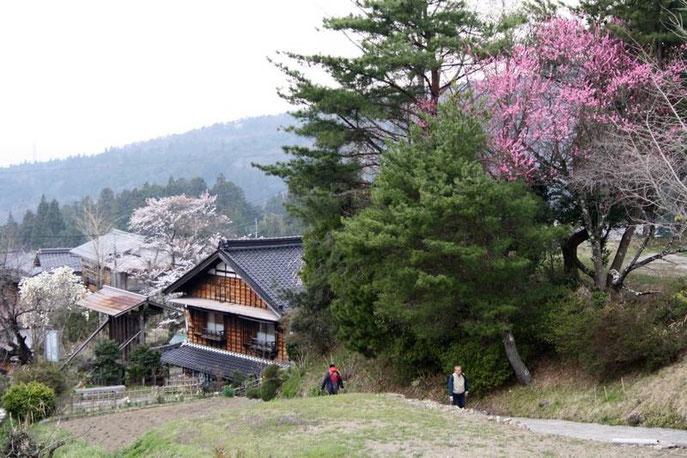 Au pied de la Nakasendō