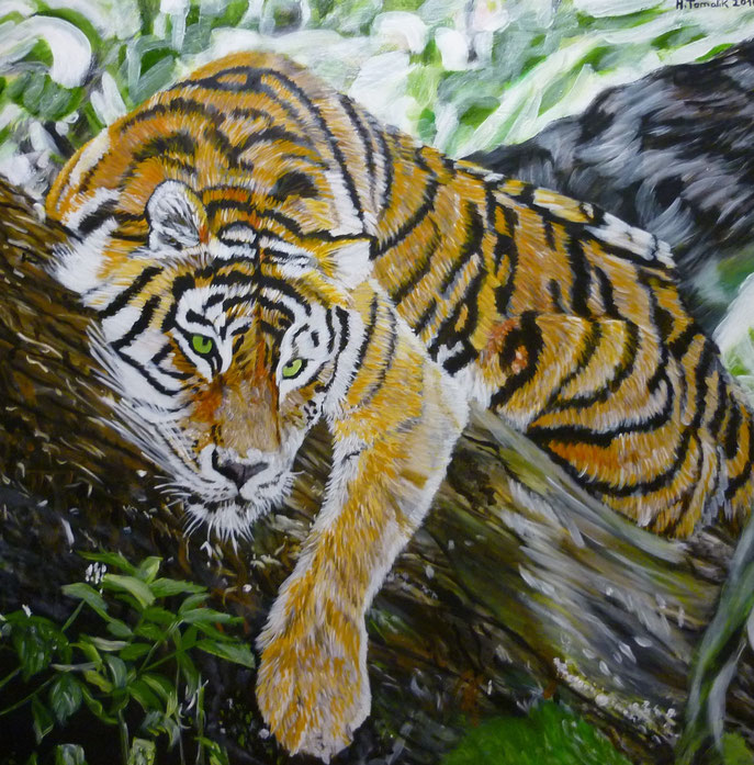 Bengal-Tiger. 100 x 100 cm,oil on canvas, private owner