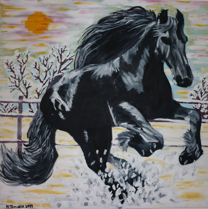 Friesian 1. 100 x 100 cm, oil on canvas, private owner
