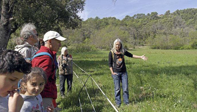 """""""une prairie remarquable par sa biodiversité"""", explique Marjorie (photo Gaby)"""