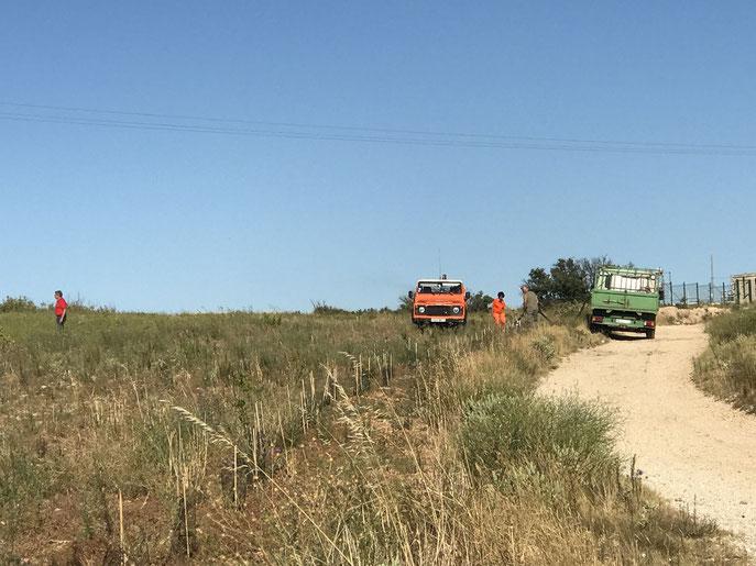 Arrosage des plantations avec le CCF sur le plateau de la Croix juillet 2020
