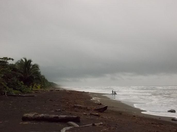 An diesen Strand schleppen sich nachts die Schildkröten und, wie du siehst, liegen einige Hindernisse im Weg.