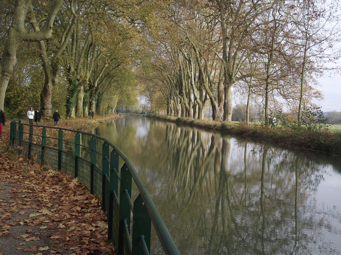 La canal sur Brevans, près de Dole (Jura).