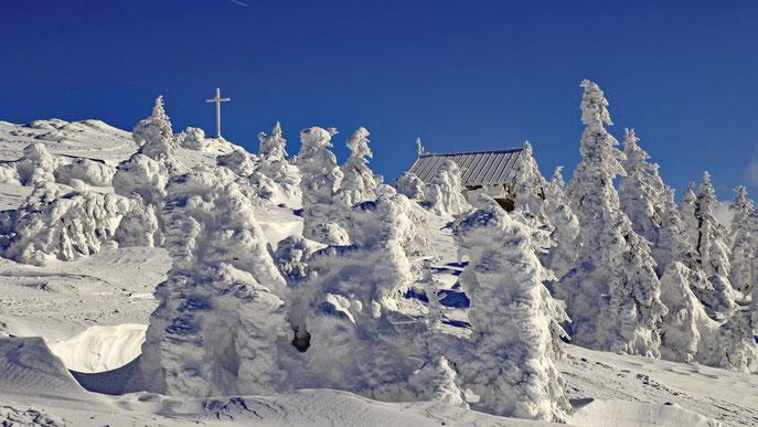 Zwieseler Hütte und Gipfelkreuz am Großen Arber -   Winter 2019 -