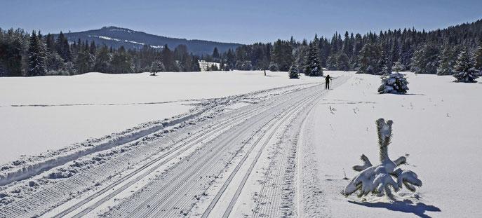 Langlauf im Böhmerwald