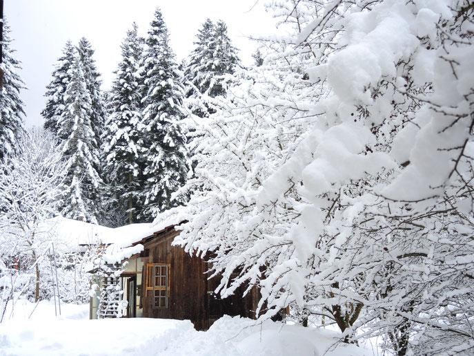 """Unser """" Winter Garten"""""""