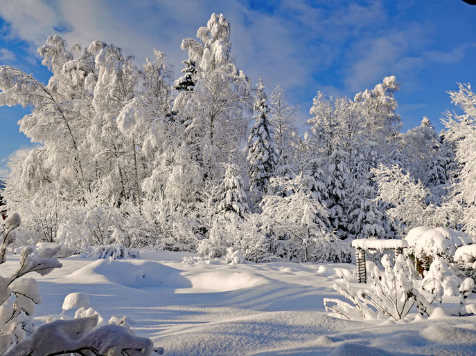 """Winterblick von unserer Ferienwohnung """" Schwarzeck """""""