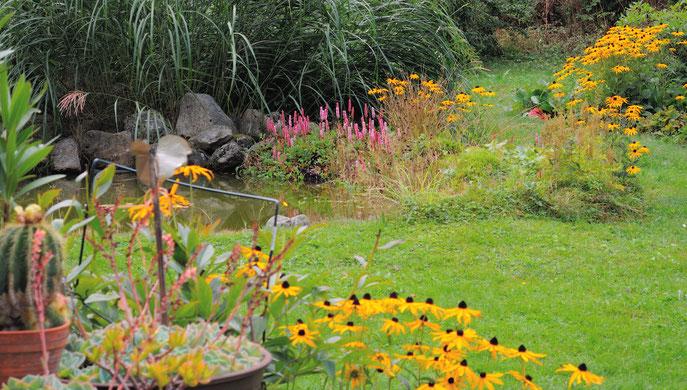 Am Gartenteich