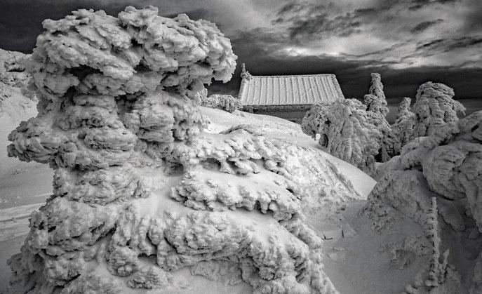 Winterabend am Großen Arber