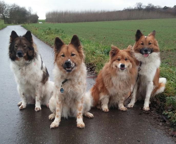 Wir Mädels gehen auch im Regen gern spazieren.