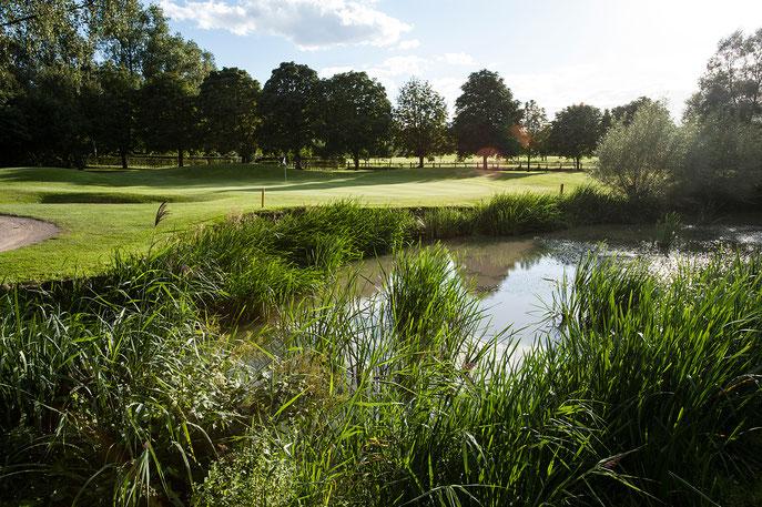 Bild 2: Perfekt in die Natur eingebettet: der Golfplatz vom GC Mülheim an der Ruhr - © GC Mülheim an der Ruhr