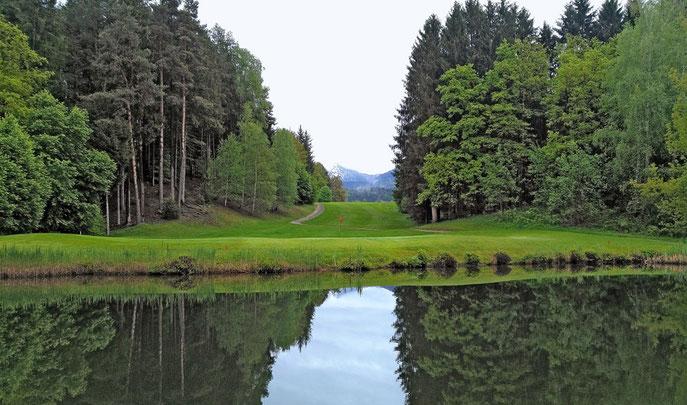 Blick auf Grün und Abschlag der Spielbahn 16 Golfplatz Schloss Finkenstein - © Claudia Bruckmann