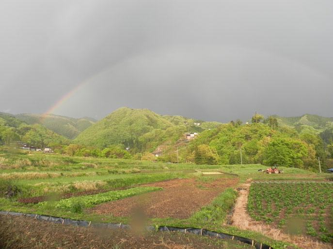 4/29,17:00雷雨あり、棚田に虹が発生しました