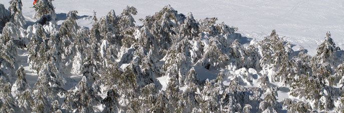 Estacion de ski