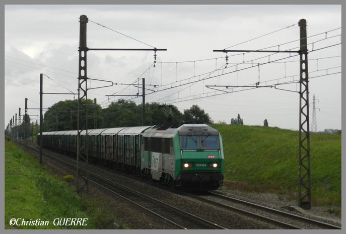 26184 et le Baygon Vert Corpeau