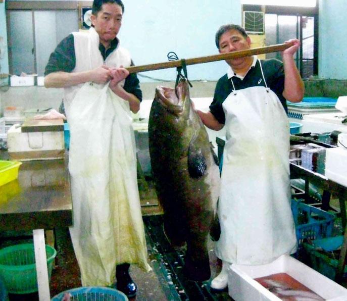 日南市に上がる魚も一級品です!