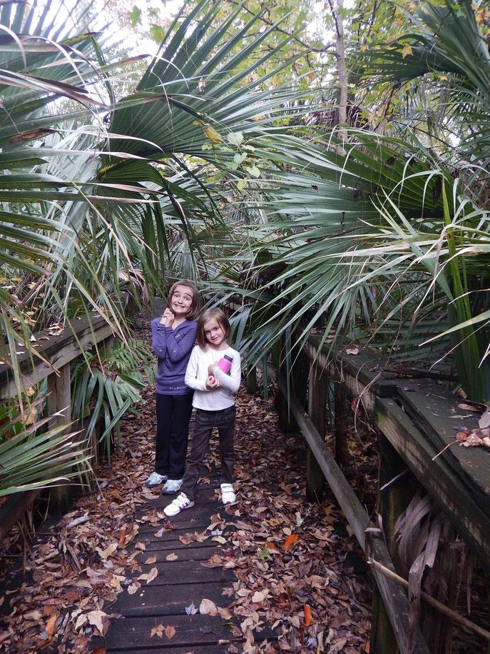 Nous avons passés 5 jours dans la forêt nationale Ocala, de superbes paysages,  des sentiers 4x4 géniaux , de superbes bivouacs.