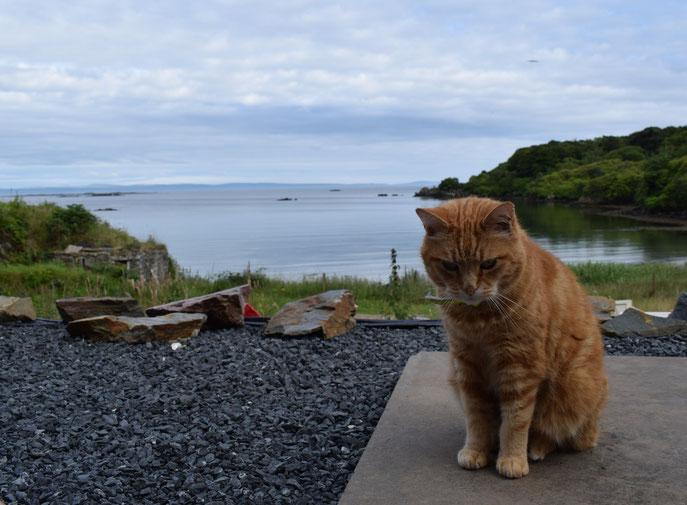 The Dower House, Isle of Islay, Scotland