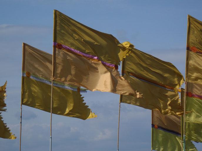 Flags Glastonbury