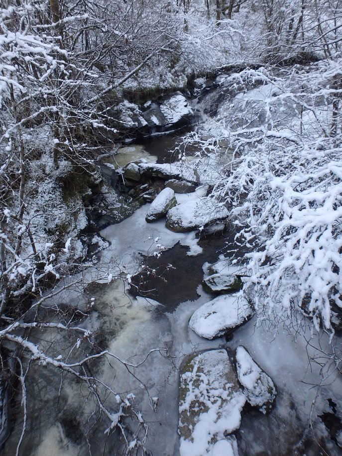 Frozen stream, West Highland Way in December