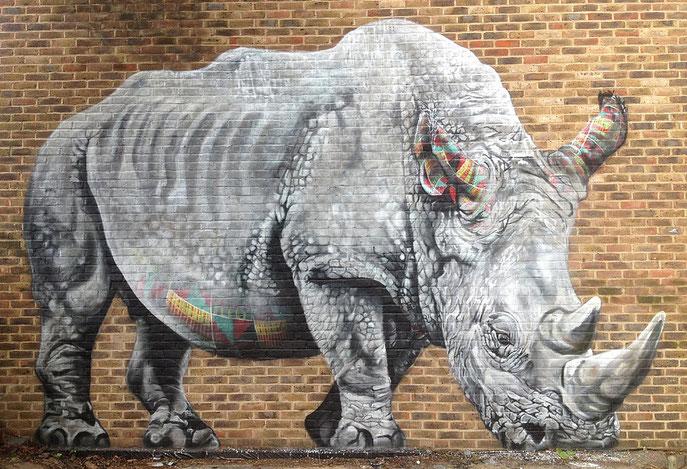 street art, Louis Masai, Rhino