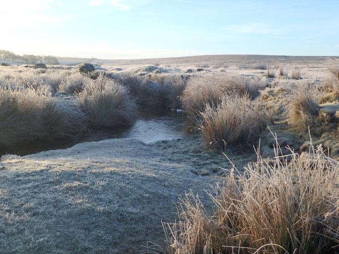 Frost over Dartmoor, Devon, England