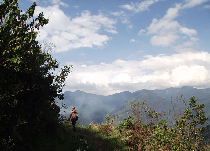 Mountains in Coiroco, Yungas, Bolivia