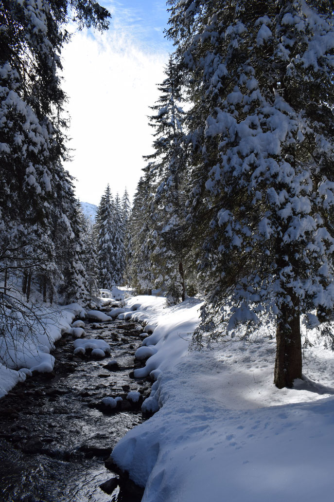 river walk, winter snow, Morgins, Switzerland