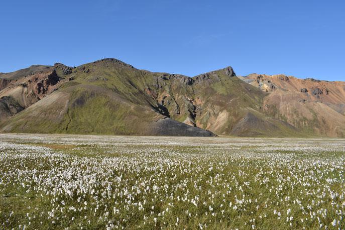 Suðurnámur from Vondugil