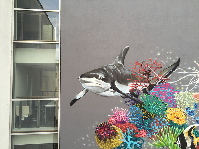 street art, Louis Masai, Blacktip Reef Shark
