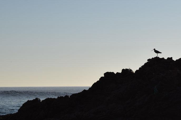 Naminia, Costa da Morte