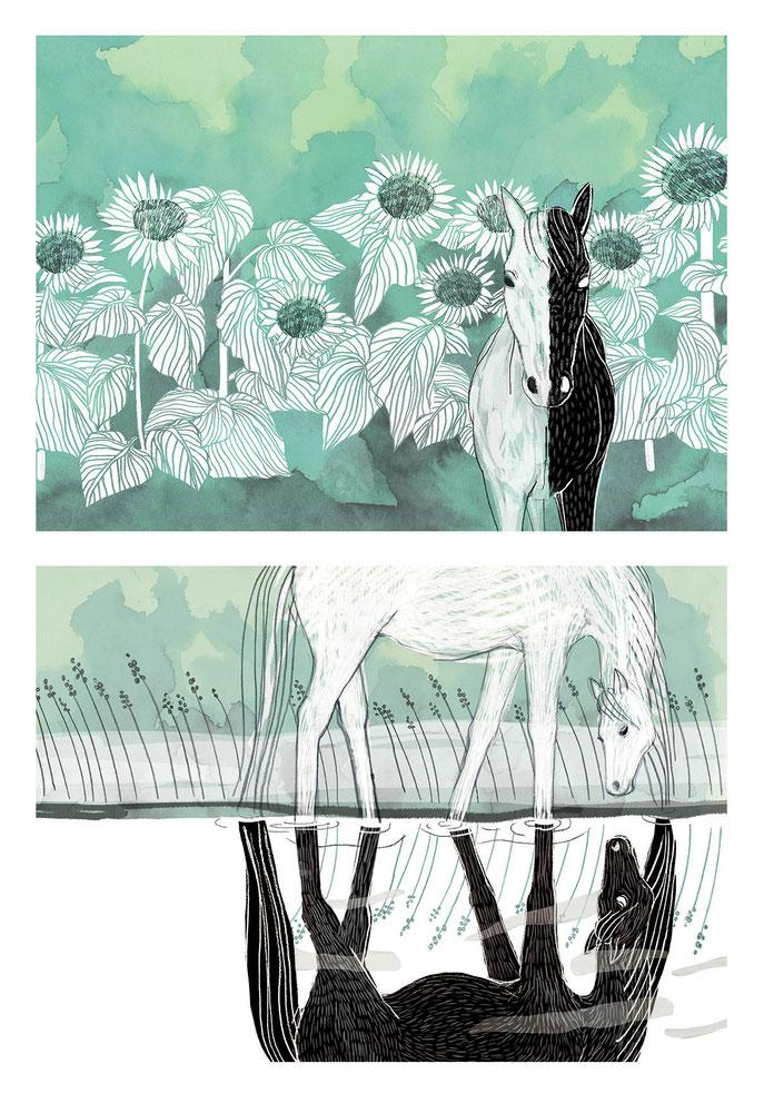 Ewelina Wajgert, horse reflections  illustration