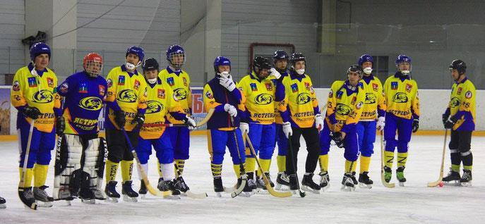 Ястребы на турнире в Обнинске в 2015 году.фото Данилыч Ъ .