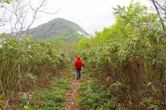 三県境界の四角岳と中岳へ - yam...