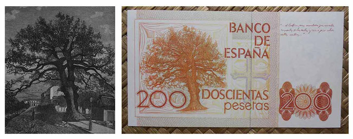 """Grabado del carbayón del ilustrador José Fernández Cuevas recogido en la revista """"La Ilustración gallega y asturiana"""" y reverso del billete de 200 pesetas de 1980"""