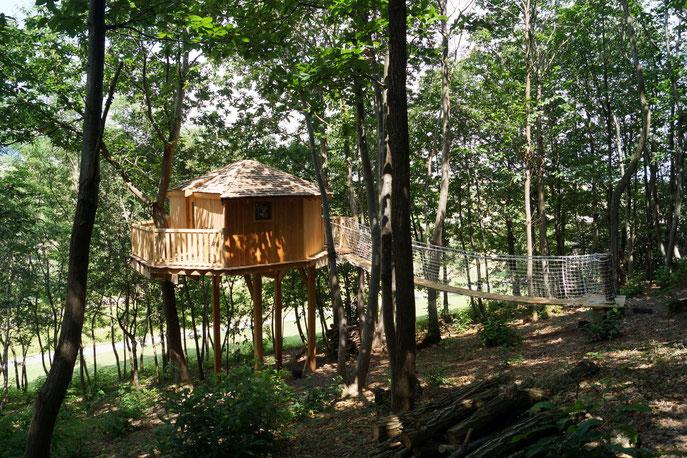 cabane perché dans un arbres et sur pilotis
