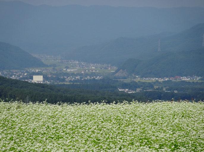 猿楽台地から南会津町を望む