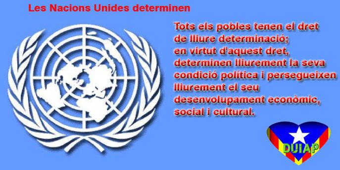 Carta de les Nacions Unides de 1.960