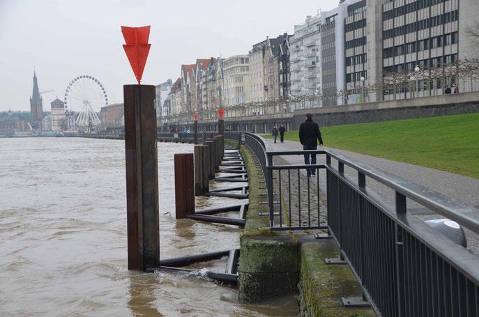 ganz schön hoch, das Wasser vor Düsseldorfs Toren
